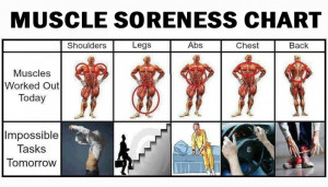 Sore-Musclesimage